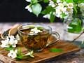 Bật mí 10 tác dụng của trà hoa nhài mà có thể bạn chưa biết