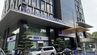 Vinaconex sẽ chia 36,2 triệu cổ phiếu quỹ cho cổ đông